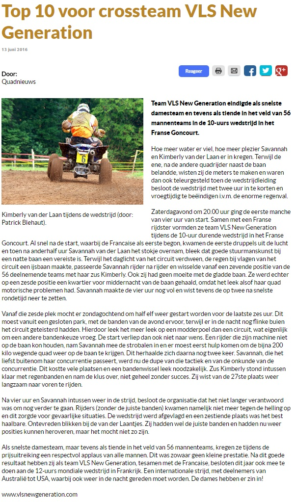 Article Doetinchems Vizier